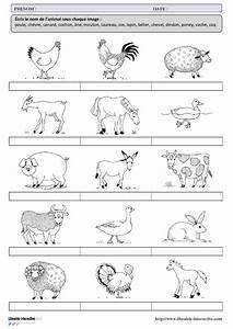 Controle Technique Petite Foret : une petite fiche de vocabulaire sur le th me des animaux de la ferme pour les l ves de cp et de ~ Medecine-chirurgie-esthetiques.com Avis de Voitures