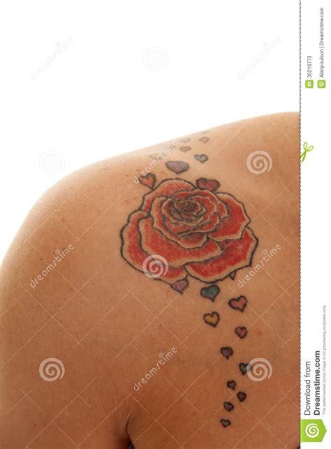 tattoo close rose  shoulder stock  image