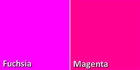 quelle couleur dans une cuisine quelle est la différence entre le fuchsia et le magenta
