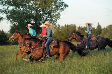 group  people riding horses  field stock photo