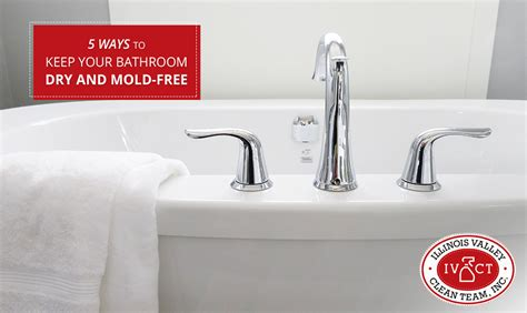 5 Ways To Keep Your Bathroom Dry And Mold-free