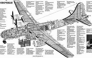 G Force Diagram C 130
