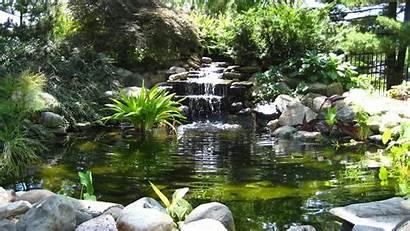 Garden Water Ponds Wallpapers
