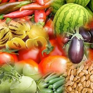 Einfaches Gemüse Für Den Garten : obst und gem se f r den balkon ~ Lizthompson.info Haus und Dekorationen