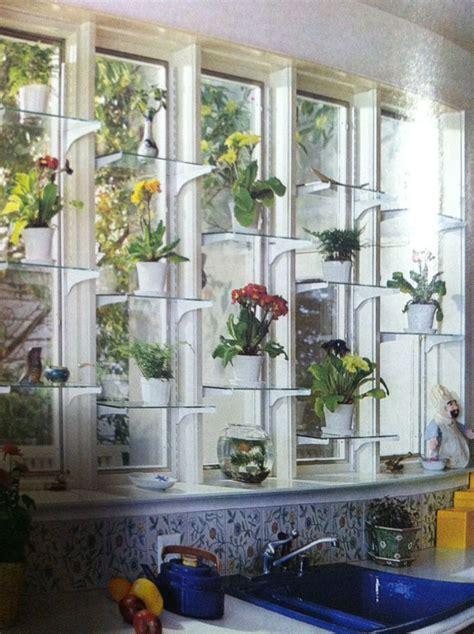window shelves  plants crafthubs   indoor