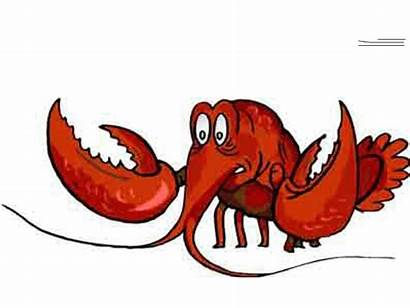 Lobster Larry Cartoonbucket Cartoons Src Character Alt