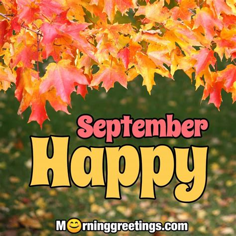 40 Best September Morning Quotes And Wishes - Morning Greetings - Morning Quotes And Wishes Images