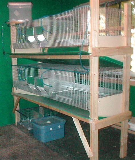 rabbit cages rabbitry pinterest meat rabbits rabbit