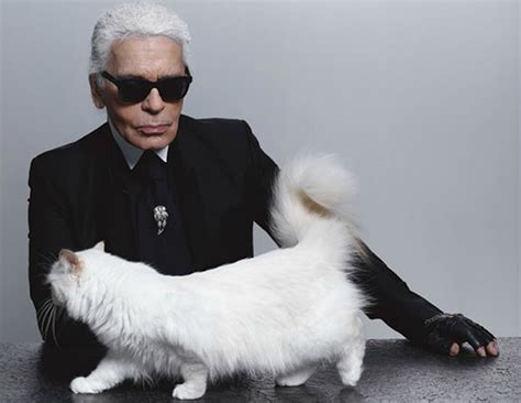 money karl lagerfelds cat choupette