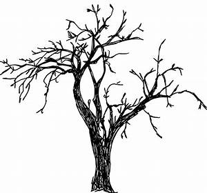 8 Tree Drawing (PNG Transparent) | OnlyGFX.com