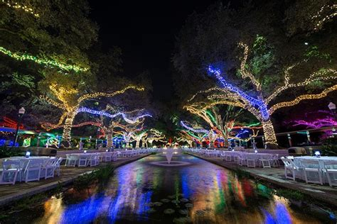 Light Show Houston by Best 25 Zoo Lights Ideas On At The
