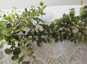 wedding arbor etsy eucalyptus garland artificial floral by flowerfilledweddings