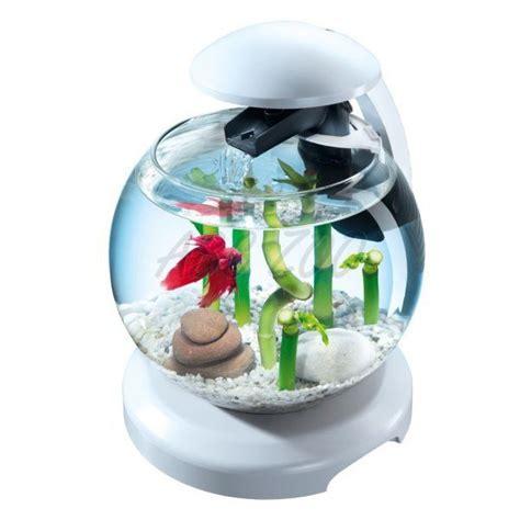 aquarium rond pas cher aquarium f 252 r goldfische oder kffische wei 223 kugel 6 8 l abc zoo