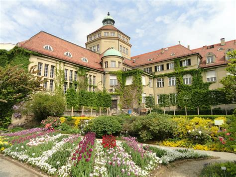 Dateiflowers In The Botanischer Garten München