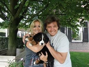Berner Sennenhund Gewicht : pups berner sennen kennel de hoge veluwe ~ Markanthonyermac.com Haus und Dekorationen