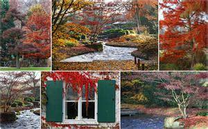 Botanischer Garten Augsburg Im Herbst by Botanischer Garten Botanischer Garten Augsburg 6 News