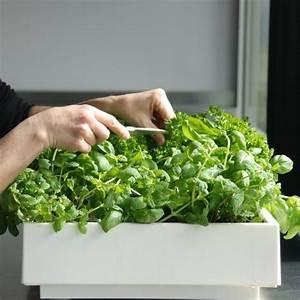 Vertikaler Garten Kaufen : vertikaler indoor oder outdoor garten karoo online kaufen ~ Lizthompson.info Haus und Dekorationen