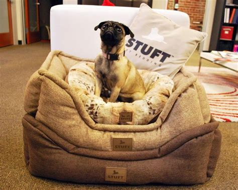 Stuft Pet Bedding by Lola Found Herself The Comfiest Spot In The Office Stuft