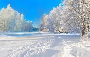 4K Winter Wallpaper
