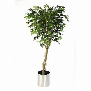 Ficus Benjamini Vermehren : artificial ficus tree benjamina ficus plant suitable for ~ Lizthompson.info Haus und Dekorationen