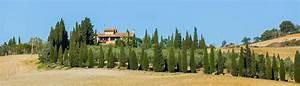 Haus Mieten Italien : ferienwohnung ferienhaus in der toskana mieten ~ Eleganceandgraceweddings.com Haus und Dekorationen