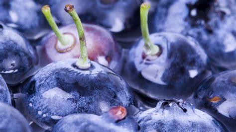 blueberry full hd wallpaper  background image