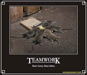Funny Quotes About Teamwork. QuotesGram