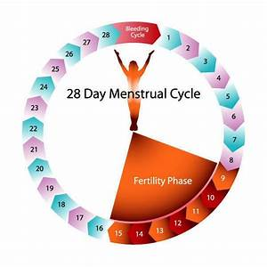 Calendar Method Fertility Chart 17 Best Images About Natural Family Planning On Pinterest
