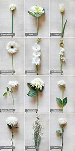 white flowers by name | Flowers | Pinterest | Winter ...
