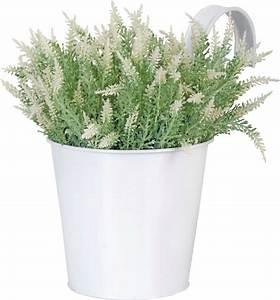 Blumentopf Mit Haken : esschert design blumentopf mit haken wei pflanzenfee ~ Watch28wear.com Haus und Dekorationen