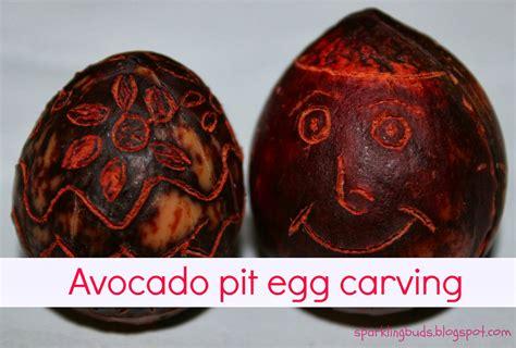 avocado pit egg carving sparklingbuds