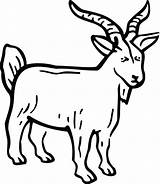 Billy Goats Gruff Coloring Pages Goat Three Drawing Boer Clipart Getdrawings Printables Printable Line Preschool Getcolorings Clipartmag sketch template