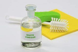 Microfiber Cleaner Urine by Urine How To Remove And On