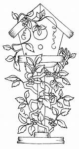 Coloring Pages Birdhouse Bird Printable Flowers Print Getcolorings Covered Getdrawings sketch template