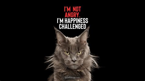 im  angry im happiness challenged quotesbook