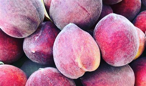 Schnepf Farms Queen Creek Ends Annual Peach Festival