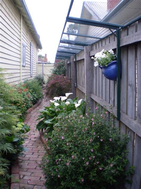 Keep Cats In Backyard by Fence Cats And Back Yard On