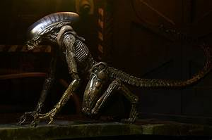 Images of NECA's Alien Series 3 Dog Alien Figure « Pop ...