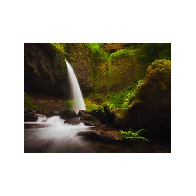 Ponytail Falls with Fern : Columbia River Gorge Oregon