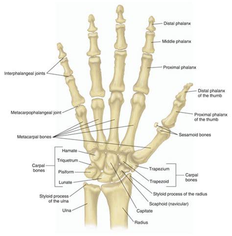 Arthritis Joint Damage Disability Advocates Group Inc