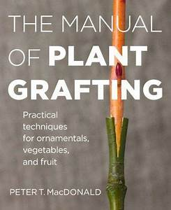 The Manual Of Plant Grafting  Practical Techniques For