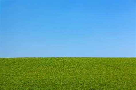 Green Grass Field Under Blue Sky · Free Stock Photo
