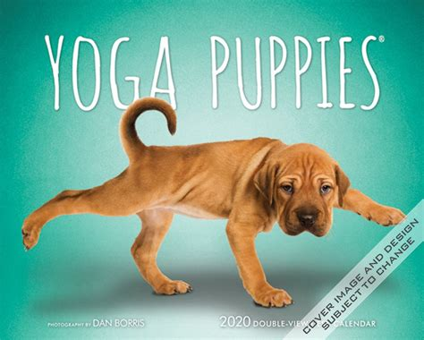 yoga puppies monthly double view easel calendar