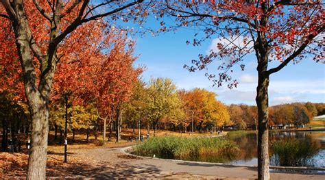 fall places take montreal horst petzold shutterstock park1 daily dailyhive