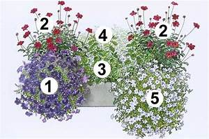 Künstliche Blumen Für Balkonkästen : trendige blumenk sten zum nachpflanzen balkonk sten ~ A.2002-acura-tl-radio.info Haus und Dekorationen