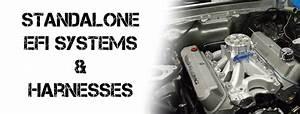 Efi Standalone Systems  U0026 Components