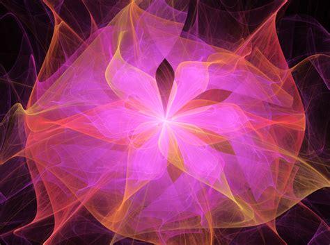 Lotus Flower Bomb By Tiffrmc720 On Deviantart
