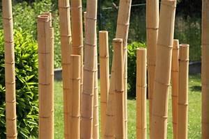 Ideen Für Sichtschutz Im Garten : sichtschutz im garten 22 raffinierte ideen anregungen teil 12 ~ Sanjose-hotels-ca.com Haus und Dekorationen