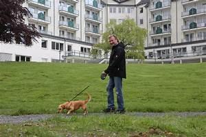 Dr Becker Rhein Sieg Klinik Nümbrecht : reha mit hund archive ich darf mit rein ~ Yasmunasinghe.com Haus und Dekorationen