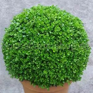 Buchsbaum Kugel Schneiden : buchsbaum kugel 39 faulkner 39 50cm ~ Lizthompson.info Haus und Dekorationen